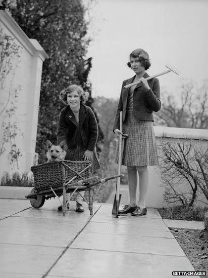 گزارش تصویری BBC از سگ های ملکه