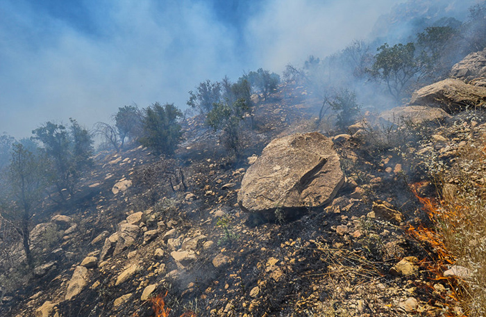 آتش بيتدبيري در جنگلهاي زاگرس/ چرا مسؤلين مسؤليتپذير نيستند؟ +تصاویر