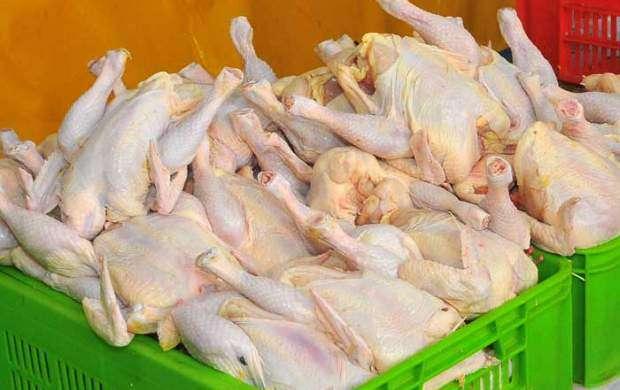 پرواز قیمت مرغ به سوی کانال ۱۰ هزار تومانی