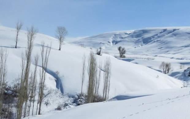 ماندگاری هوای سرد در کشور تا جمعه