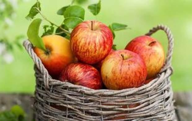 چرا سیب مهم ترین میوه دنیاست؟