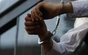 مجری قلابی کلاهبردار دستگیر شد