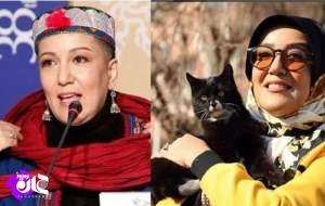 پانته آ بهرام؛ از گربه بازی تا کشف حجاب در جشنواره فجر/ مردم عادی در خطاهای مشابه اینگونه حاشیه امن دارند؟!