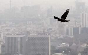 تاثیر زلزله تهران بر معاملات مسکن