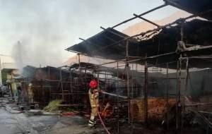 ۳۲ غرفه در بازار گل آتش گرفت +تصاویر
