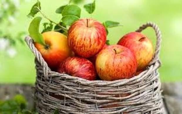 سیب و فوایدی که نباید فراموش شوند