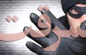 فرجام باند رابین هودهای قلابی! +عکس