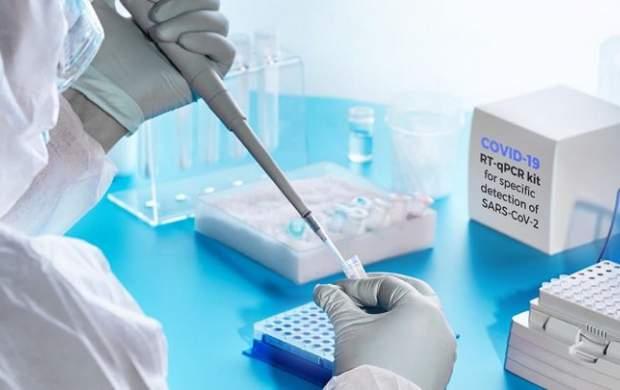 ۲۳جهش ویروس کرونا در کشور کشف شد