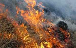 کوههای شاهپور دوباره شعلهور شد