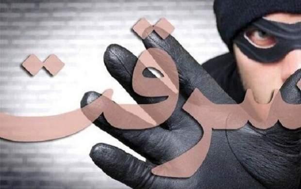 سرقت از خانه پولداران در پوشش خدمتکار