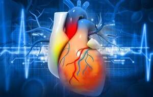 مهمترین علل ابتلا به بیماریهای «قلبی»
