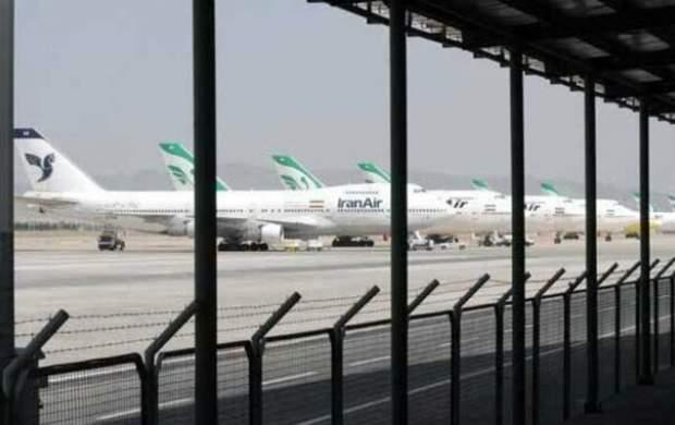 ماجرای رهاسازی دامهای زنده در فرودگاه امام(ره) چه بود؟