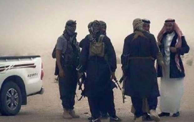 برنامهریزی داعش برای عملیات در پنج استان عراق