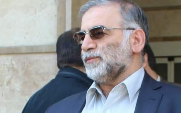 واکنش ایران به ترور شهید دکتر فخریزاده چه باید باشد؟/ واکنشی که متضمن امنیت ملی هم باشد؟ +جزئیات