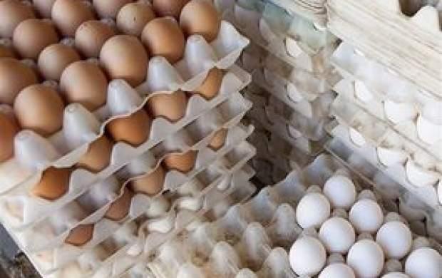 هر شانه تخم مرغ نزدیک به ۴۰ هزار تومان