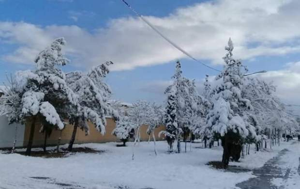 سرمای زیر صفر و یخبندان در ۲۵ استان