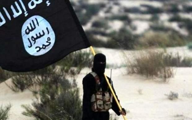 داعش رسماً از جنگ با انصارالله یمن خبر داد