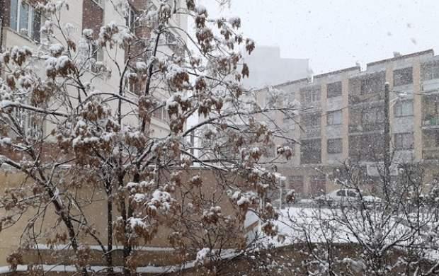 برف و باران و یخبندان در ۱۶ استان کشور