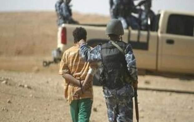 بازداشت ببر داعش +جزئیات