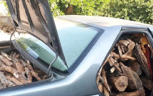 قاچاق چوب با آمبولانس تایید شد +جزئیات
