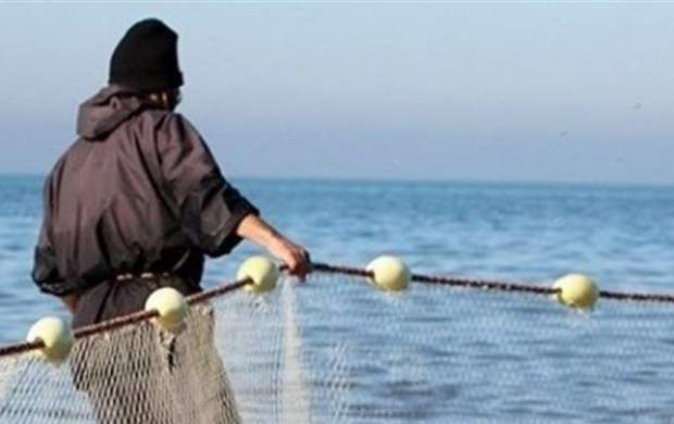 ماهی ۵۰۰ کیلویی در تور صیادان مازنی