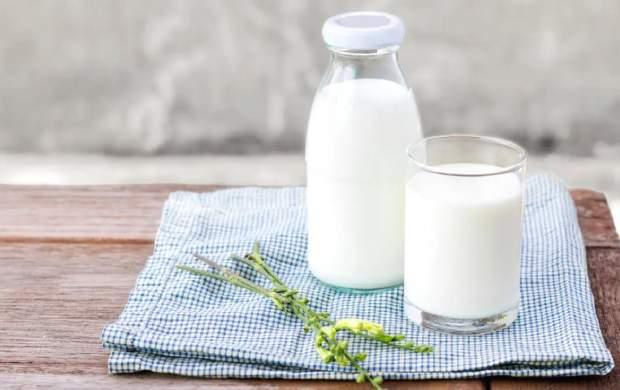 گرانترین پنیر از شیر کدام حیوان گرفته میشود؟