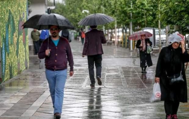 بارش باران و وزش باد در تهران