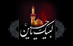 مدافع حرمی که امام حسین(ع) به او وعده شهادت داد +عکس