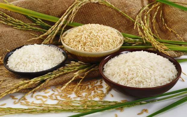 قیمت برنج خارجی افزایش نداشته است